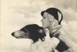 vintage-star-dog-30s.jpg