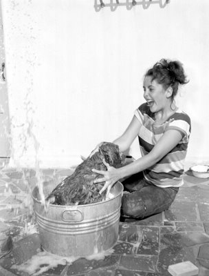 elizabeth-washes-her-dog.jpg