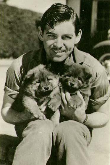clark-gable-dogs.jpg