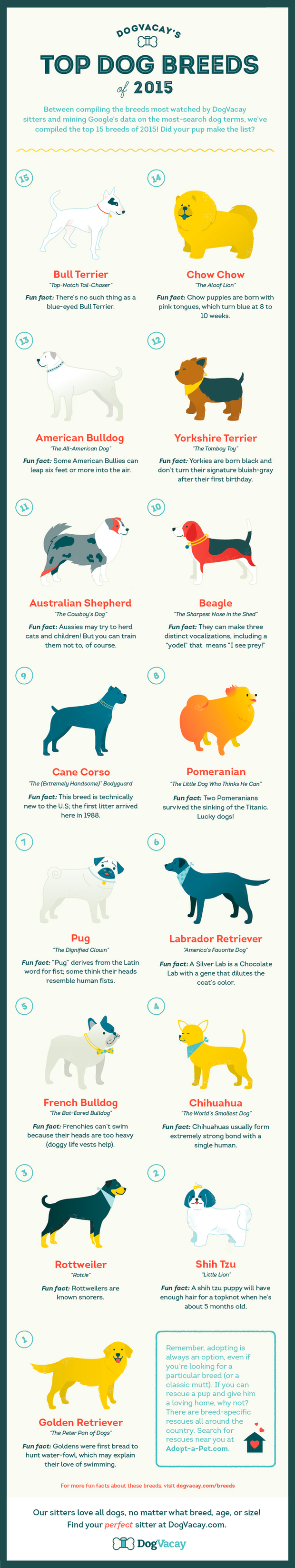 Top dog breeds of 2015