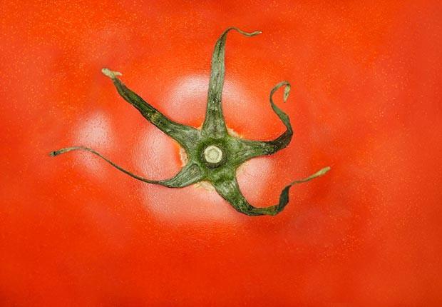 620-skin-cancer-wrinkle-health-prevention-foods-tomato.imgcache.rev1369149183404