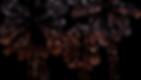 ビーナスカフェイメージ画像