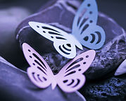 purple rock butterflies.jpg