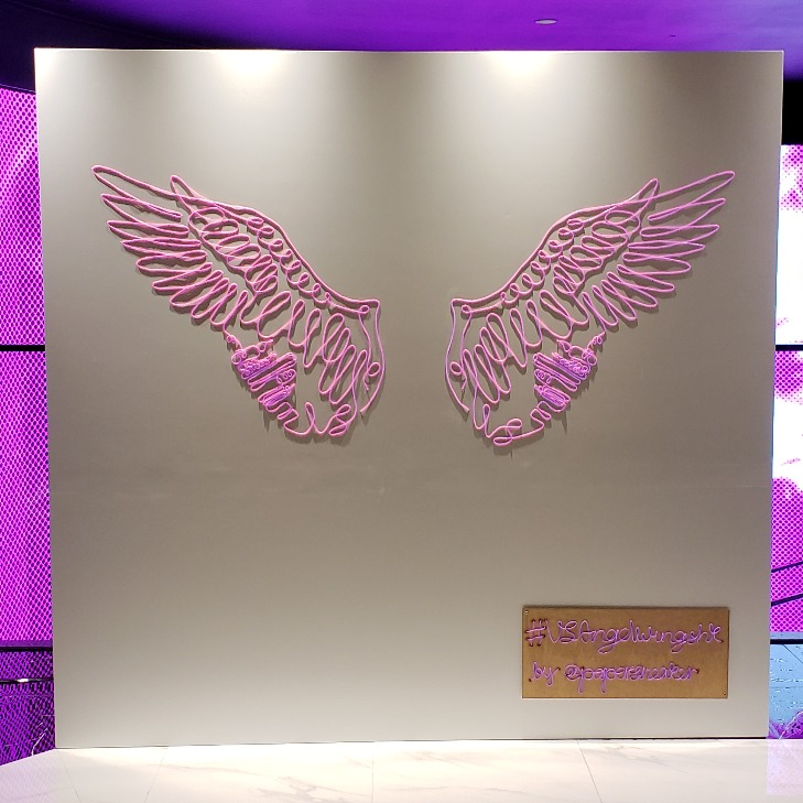 Victoria's Secret Angel Wings