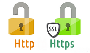 SSL Blumweb