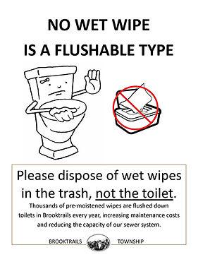 No Wet Wipe is a Flushable Type Flier.jp