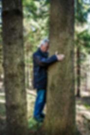 Baum umarmen und Energie holen