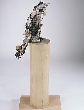 Birch Bird.jpg