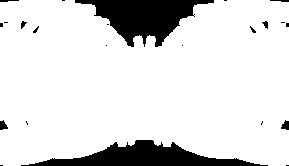 KANONENFIEBER-white.png