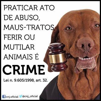 Não vai ficar sem punição. Judiar dos animais é CRIME!