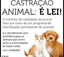Castração Animal é LEI!