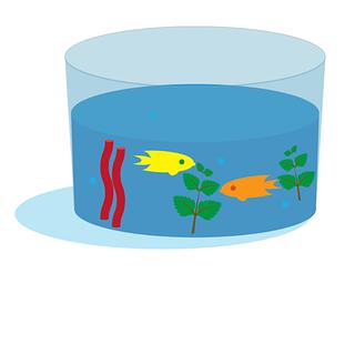 Make an ocean you can eat for grades K-4