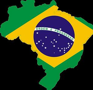 Contact Refined icumsa 45  Santos Brazil Brazil Sugar Group LLC