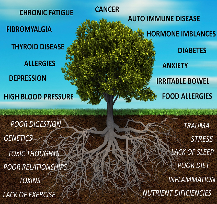 functional medicine st louis tree