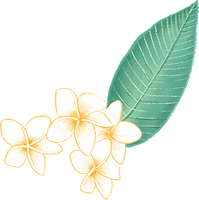 Plumeria Flower_edited.png