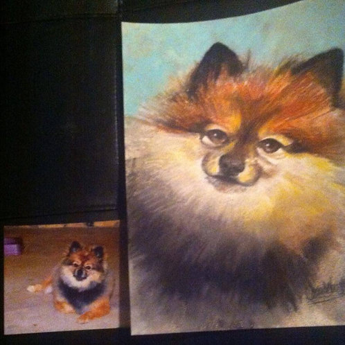 "18""x24"" Pastel Pet Portrait-Color"
