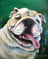 Pet, Portrait, Artist, dfw, texas, watauga, bulldog, personalized, custom, english, love, paint, dog, hand, painted, Cassie, Wright