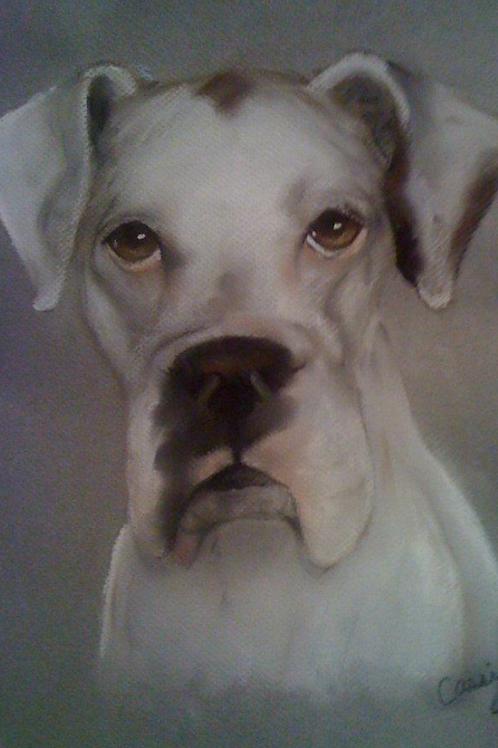 """16""""x20"""" Pastel Pet Portrait-color"""