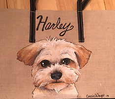 Pet tote bag, Great if boarding or overnight stays