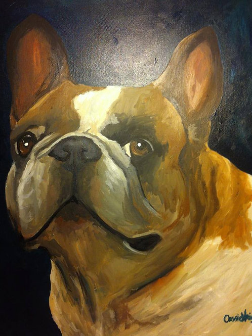 "24""x30"" Pet Portrait one Pet"