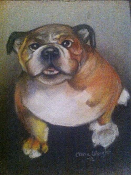 """11""""x14"""" Pastel Pet Portrait-Color"""