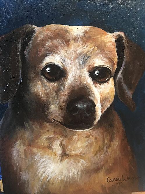 """20""""x24"""" pet portrait"""