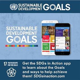 SDG-Goal-17-Partnerships for combined go