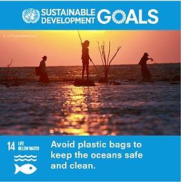 SDG-Goal-14-Blue Life.jpg