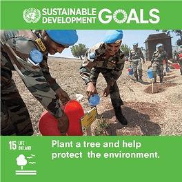 SDG-Goal-15-Land Life.jpg