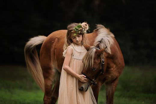 The Halcyon Days Photography Williston FL equine portraits