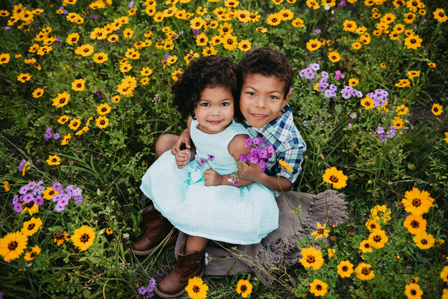 flowerfield photography