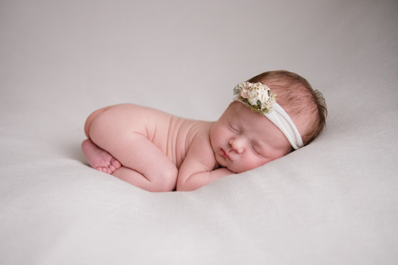 The Halcyon Days Photography Gainesville FL newborn pictures