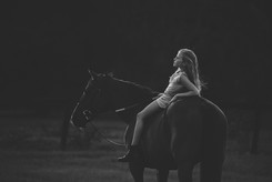 The Halcyon Days Photography Ocala FL equine portraits