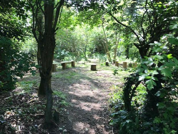 Canhams Wood.jpg