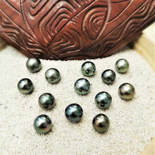 perle de tahiti peacok