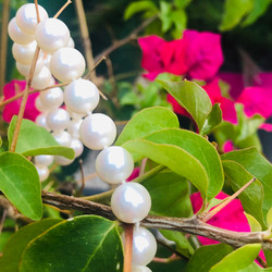 bracelet perles blanches
