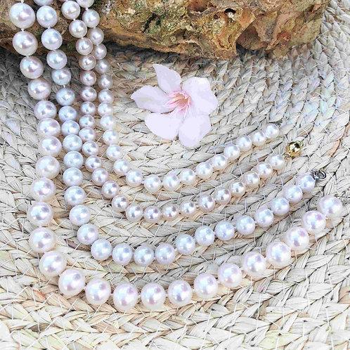 collier choker perles de culture Akoya du Japon.