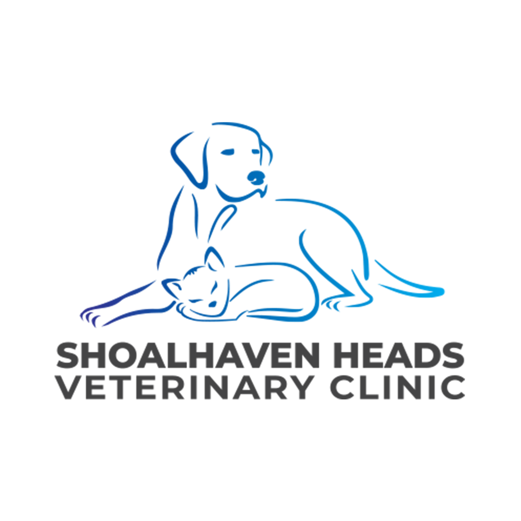 PROFILE PIC - SHOALHAVEN HEADS