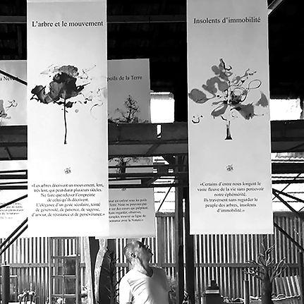 web portrait Yves Dimier calligraphe Hangar 717.jpg