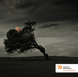 NN - Pakjesavond/code red 2013