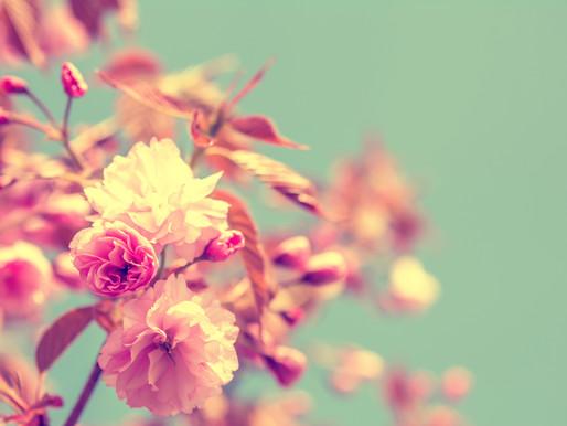 Mes 3 astuces detox pour le printemps