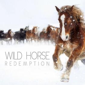 WILD HORSE_GALLERY.jpg