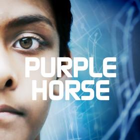 PURPLE HORSE_GALLERY.jpg