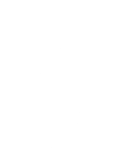 logo%20irisandcom%202%20blanc%20tr_edite