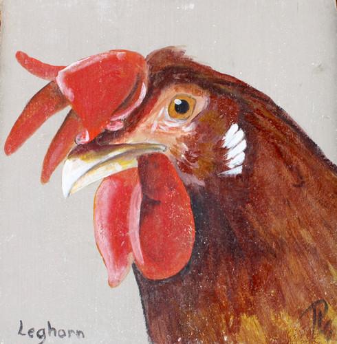 Patrick Le Gars Artiste peintre bretagne perros guirec