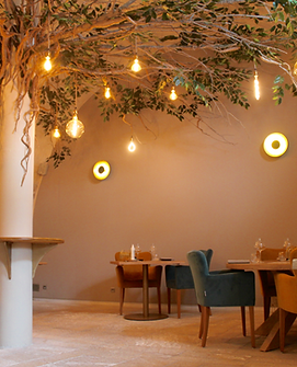 IMG_4993Restaurant gastronomique, restaurant panoramique, chambres d'hôtes. Vaison La Roma