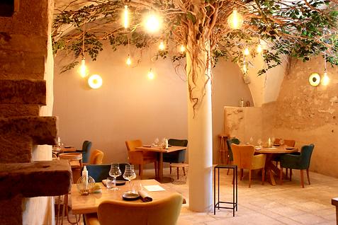 Restaurant gastronomique, restaurant panoramique de grillades, chambres d'hôtes. Vaison La