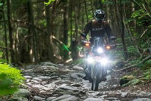NEK forest stones CRF.jpg