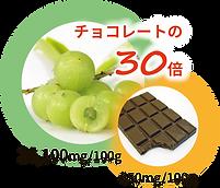 チョコレートの30倍.png