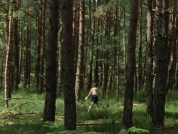 La forêt, territoire de quête et de conquête dans Yuki & Nina de Nobuhiro Suwa et Hippolyte Gira